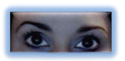 My lashes made lush with d.j.v. beautenizer Fiberwig LX