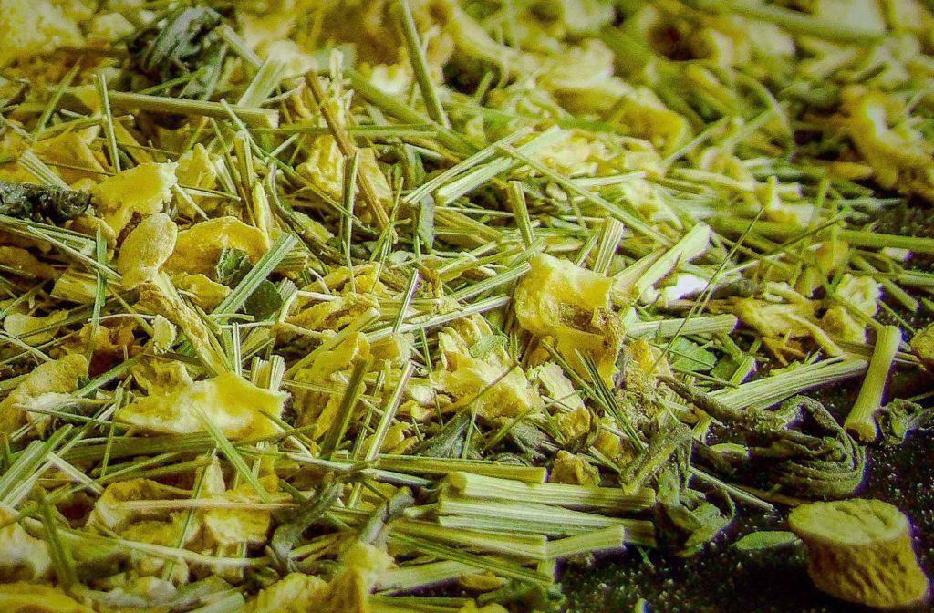 Coastal Tea Company Ginger Mint Green Tea