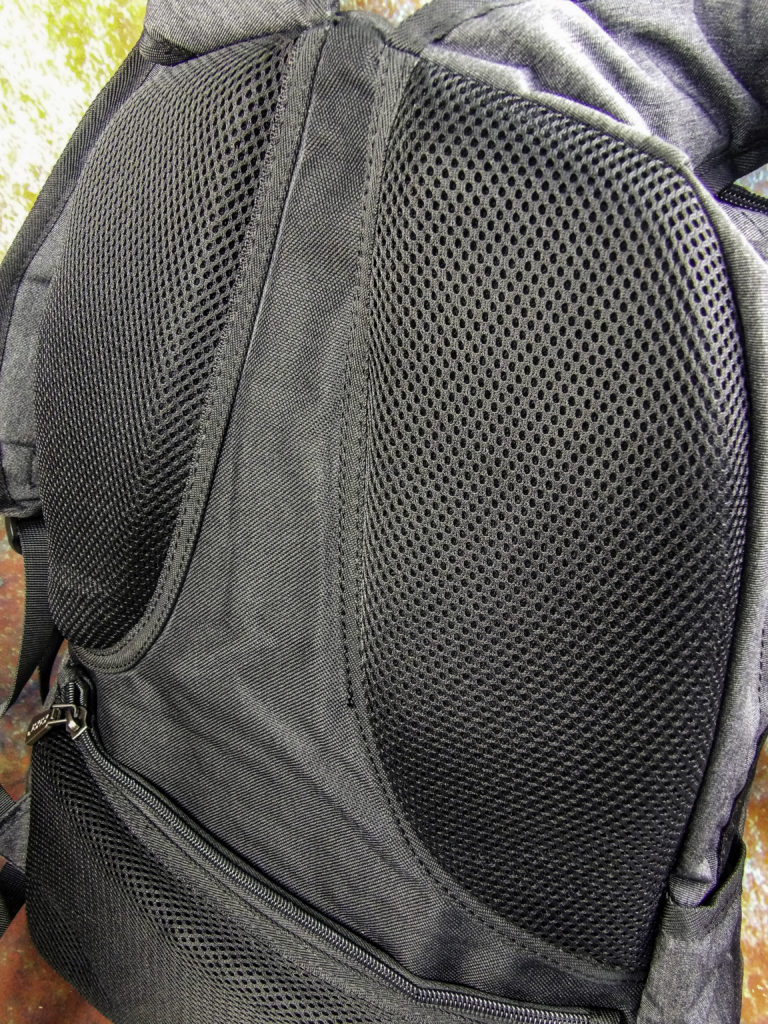 Fully padded back support