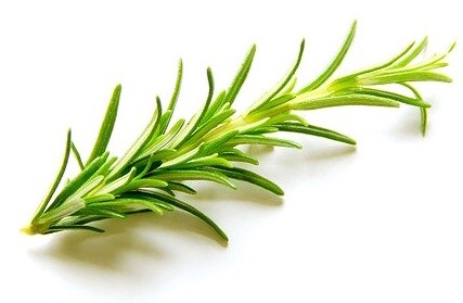 Sonage Frioz Trio contains Rosemary