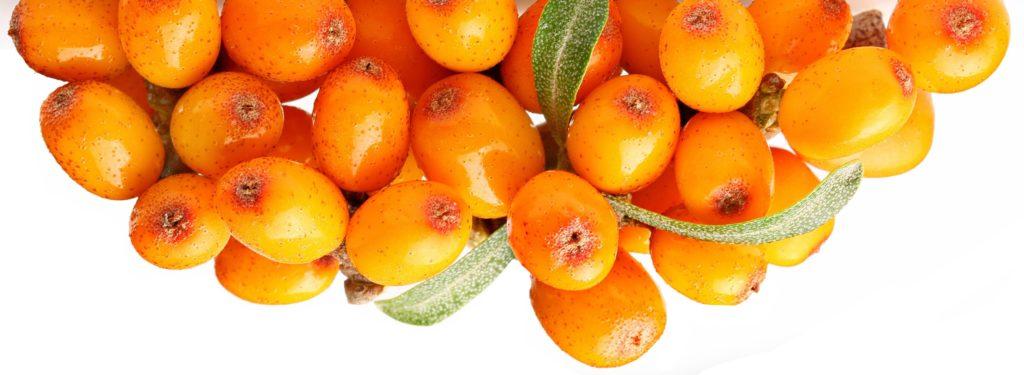 Sea Buckthorn berries contain hair nourishing nutrients