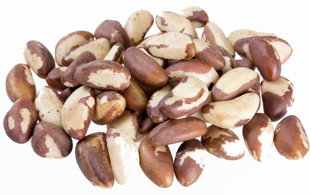 Brazil nut restores elasticity to skin