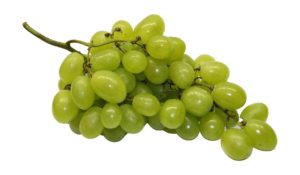 Grapeseed Oil Extract kills bacteria while softening skin