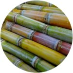 The mascara tube is made from a form of sugar cane plastic.