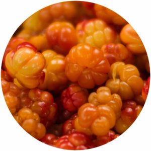 cloudberry Ingredient profile on StyleChicks.com