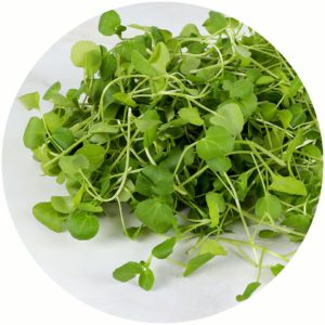 Watercress ingredients